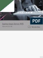 instrucciones breves WIS.pdf