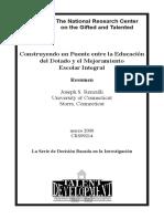 Renzulli Plan.pdf