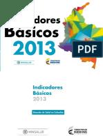 Indicadores Basicos Salud 2013