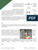AMPc.docx