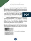 Practica de Laboratorio 7-12