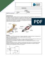 Autotronica Sensor O2