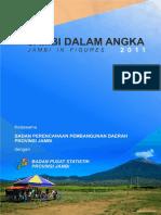 6894JDA2011.pdf