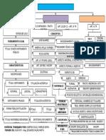 Organizador Visual-Derecho Registral-guia 5