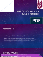 Historia Natural Del Glaucoma y Malaria