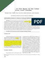 6.- Estudio Histológico Del Tracto Digestivo Del Neón Cardenal