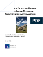 Review of Environmental Auctions