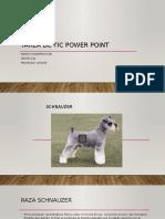 Power Point Presentacion