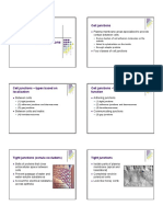 cell junctions.pdf