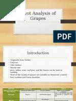 Swot Analysis of Grapes