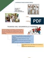 Teorias Del Desarrollo