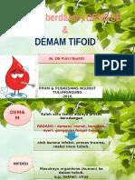 DHF dan TF