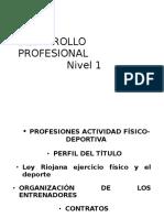 DESARROLLO PROFESIONALúltimo