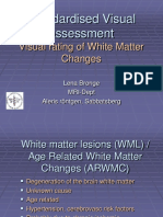 Visual_rating_wm_changes.pdf