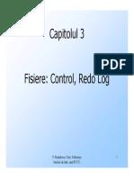 4.control.redo.log.pdf