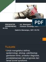 TTS Stevi