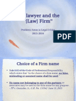 E - The Lawyer and the Law Firm