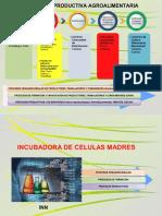 Incubadora de Celulas Madres Agroindustriales