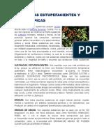 Sustancias Estupefacientes y Psicotropicas