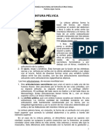 Anatomia Pelvis.pdf