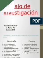 Trabajo de Investigación Natalia Avila