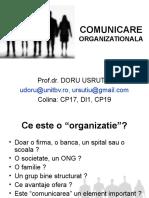 Curs 4 Comunicare.ppt