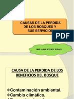 Clase 6. Causa de la perdida de los bosques-Contaminac amb..pdf