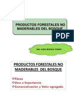 Clase 13. PFNM Fibras.pdf