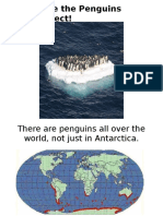 save the penguins intro ppt
