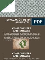 EVALUACIÓN DE IMPACTO AMBIENTAL.pptx