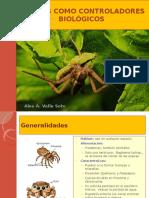 Control de Plagas Con Arañas