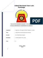 Informe Del Fundo Agrícola Don Ricardo