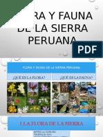 Flora y Fauna Pucallpa