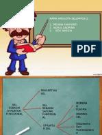 Bab 2 Sel Sebagai Struktur Fungsional