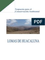 ACR Huaca Luna Moquegua