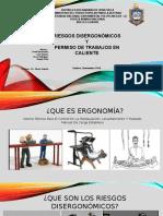 disergonomia 2911.pptx