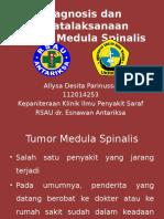 Diagnosis dan Penatalaksanaan Tumor Medula Spinalis.pptx