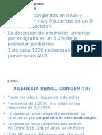 CLASE 6 Malformaciones_congenitas