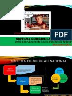 Sistema Nacional Currc.