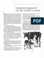 Feeding and Management of the Dairy Calf- Birth to 6Months