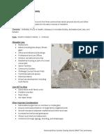 memorial drive corridor overlay draft tier summaries