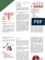 Triptico sobre el Cancer de Pulmon y ovarios
