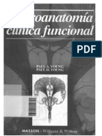 Neuroanatomia Clinica Paul Young 131028233437 Phpapp02
