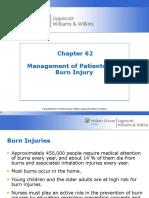 Burn_PPT_Ch_62