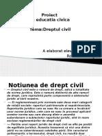 Proiect Dreptul Civil