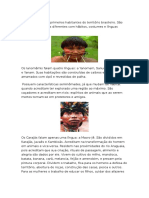 Os Índios Foram Os Primeiros Habitantes Do Território Brasileiro Vitoriaaaa