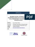 RHB. Y EST. NPS. TRASTORNOS DE LA PERCEPCIÓN Y LOS PROCESOS VISOESPACIALES