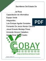 Proyecto informatica (1).docx