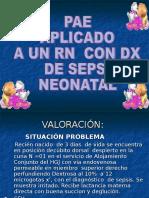 Proceso de Sepsis Neonatal