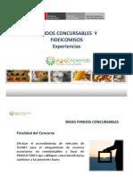 Fondos Concursables Fideicomiso 16 Jul